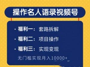 操作名人语录视频号,无门槛月入10000+