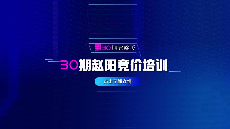 赵阳sem30期竞价教程培训视频课程