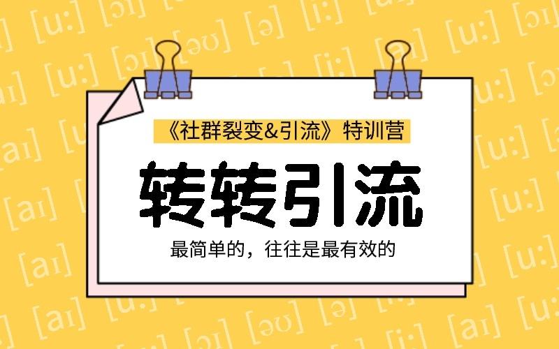 胜子老师转转引流课程视频